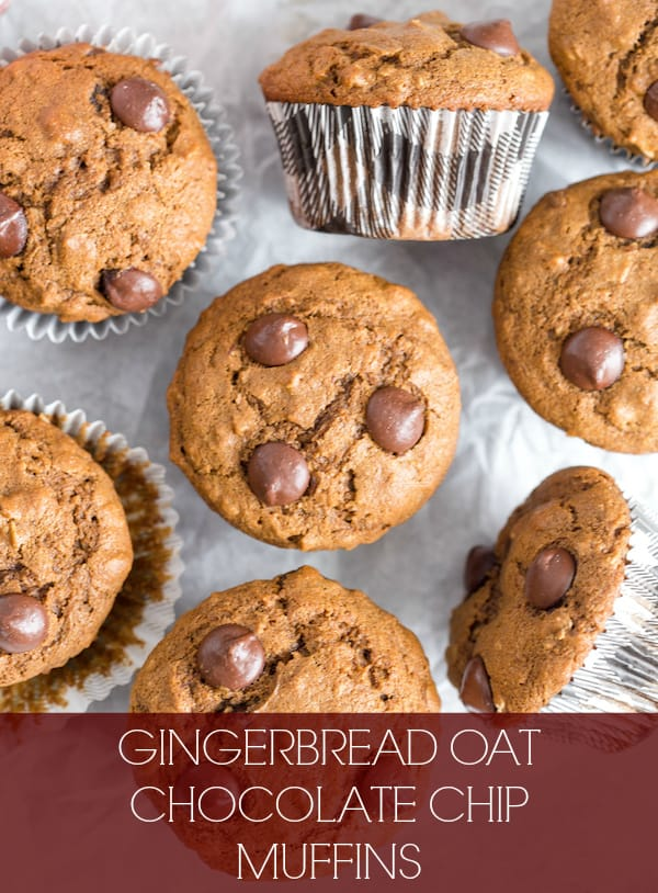 Gingerbread Oat Chocolate Chip Muffins